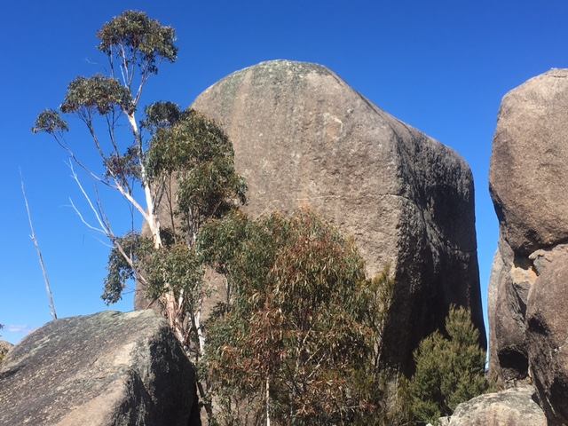 granite tor.JPG